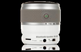 Bluetooth Speaker ES-303L